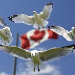 How to Obtain a Visa Before Traveling to Canada